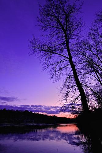 sunset sun tree water river soleil eau coucher arbre saintmaurice rivière troisrivières vosplusbellesphotos rivièreduquébec rivièrestmaurice