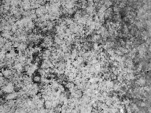 B&W grunge texture for layer T4L - Looks good in different colors too!