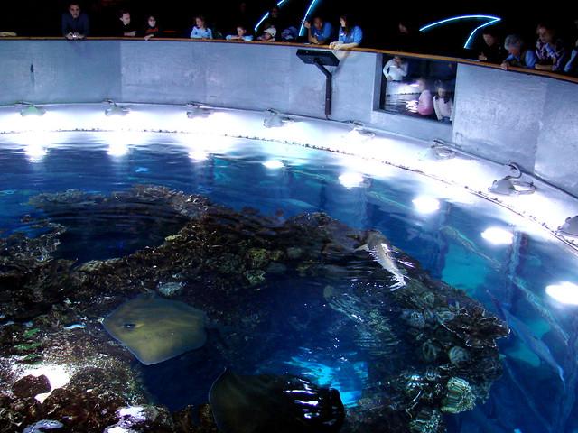 New England Aquarium Boston Massachusetts Architecture