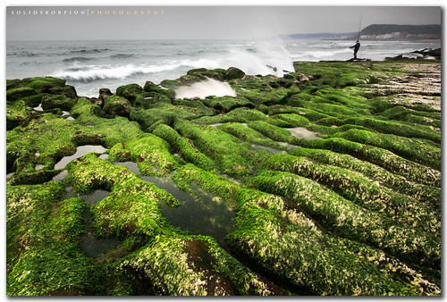 beach taiwan taipei algae 台灣 台北 reef 1022mm 老梅 cokin shihmen laomei taipeicounty 台北縣 algal vosplusbellesphotos