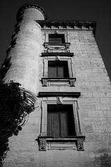 Abandoned House (02) - 21Mar09, Montcalm (France)