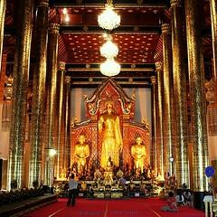20101205_3676 Wat Chedi Luang, วัดเจดีย์หลวง