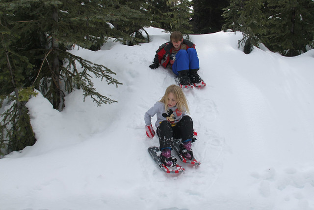 Snow shoes can be sleds too