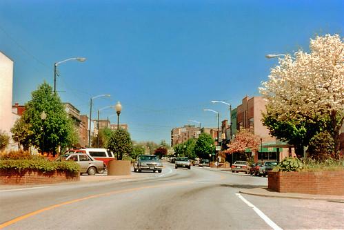 street trees town downtown northcarolina hendersonville 1994 floweringtrees businessdistrict commercialbuildings