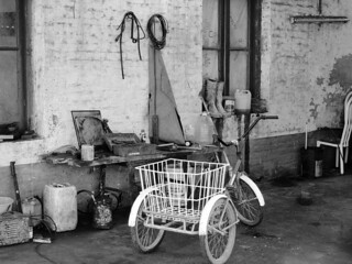 tri-cycle black and white