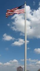 Flag waving #8