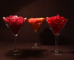 wine glass, red, stemware, glass, petal, alcoholic beverage,