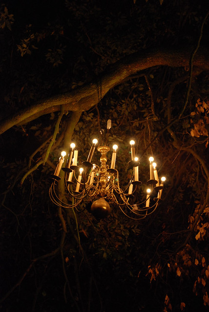 Tree Branch Chandelier: Price Finder - Calibex