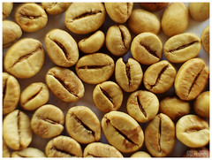 Brazil coffee beans by b. inxee♪♫, on Flickr