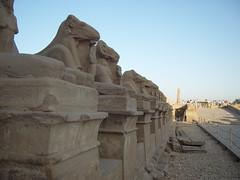Egypt- (9)
