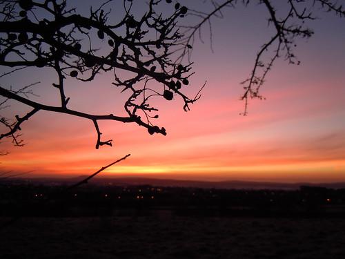 sun sunrise berry nikon coolpix northernireland nikkor ballymena ahoghill s8000
