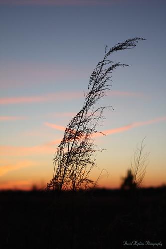 sunset nc northcarolina soe maiden smörgåsbord hwy321 abigfave catawbacounty platinumphoto anawesomeshot davidhopkinsphotography