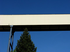 Conveyor with tree