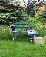 Der Winter ist vergangen reise übers grüne Land und mache Picknick 001