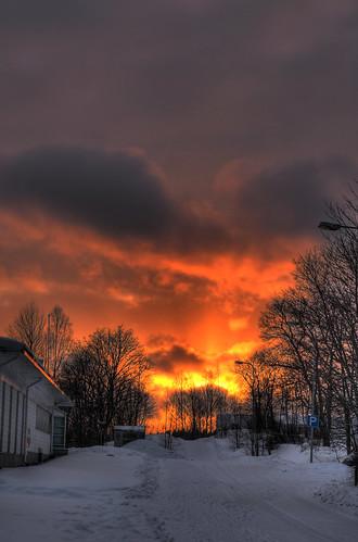 trees sunset sky sun clouds finland landscape geotagged fire hdr cumulusmediocris mäntsälä tonemapped tonemap 3exp handheldhdr cumulusfractus stratocumulusopacus