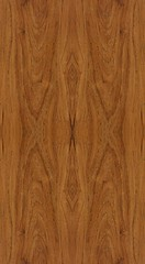 Pattern Wood background texture