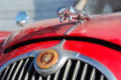Red Jaguar Mark 1: Chrome