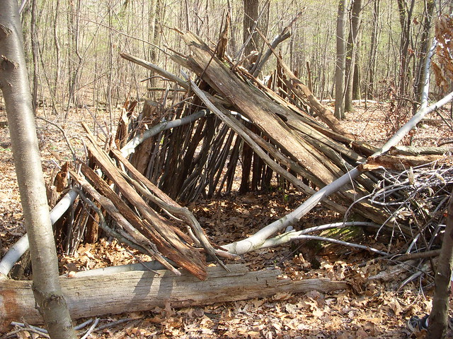 how to build a fort in the woods with sticks