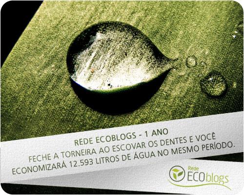Aniversário de 1 ano da Rede Ecoblogs
