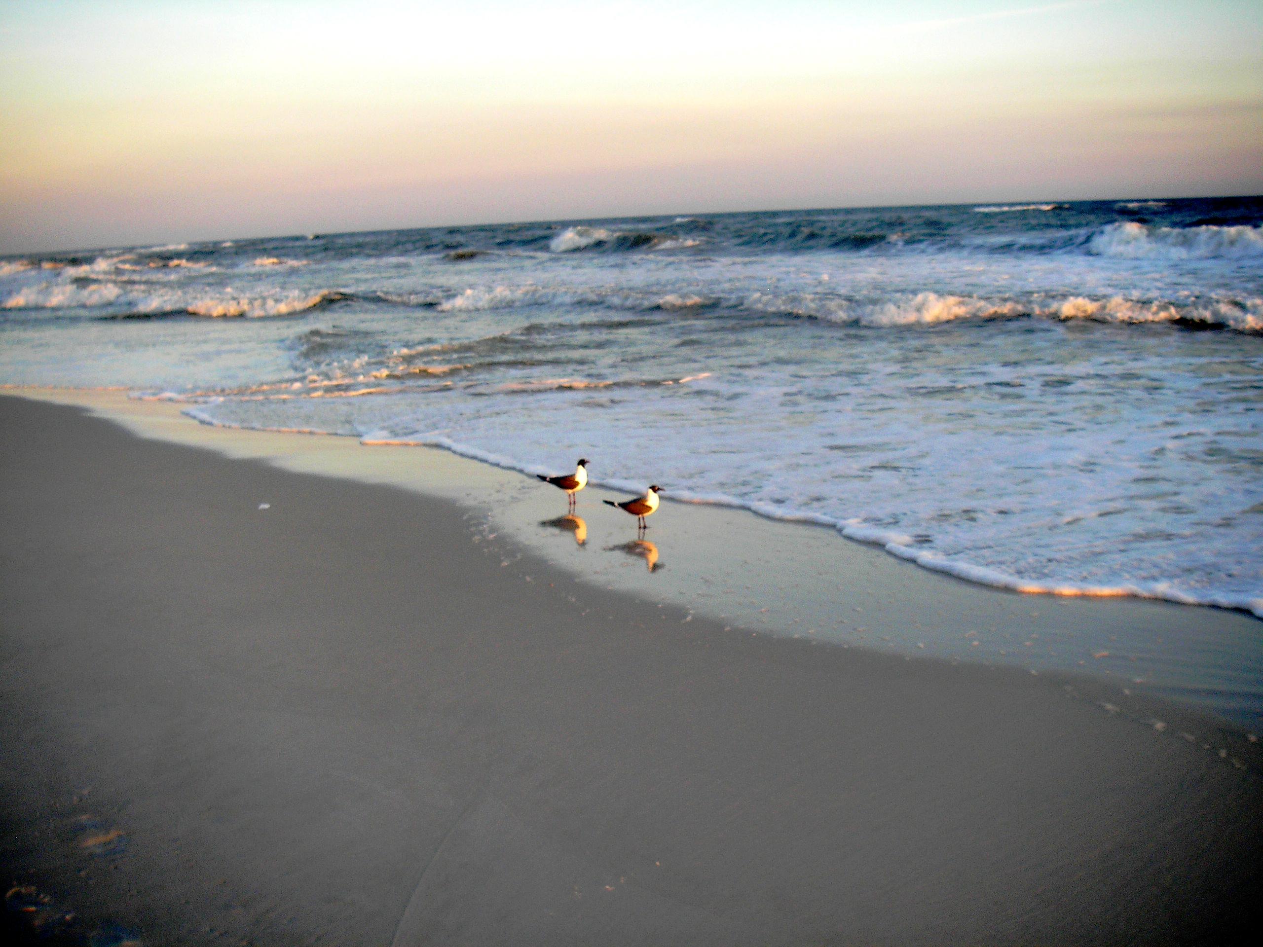 Speed dating fort walton beach florida
