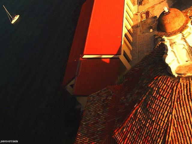 EL SVOLO DEL COCAL TheSeagull'sFly