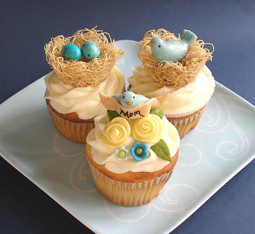 Mama Bird Companion Cupcakes