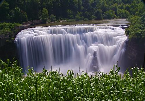 waterfall lowerfalls urbanwaterfall geneseeriver tallgrasses onetimeonly lotsofspray yesitwasworthit