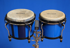 tom-tom drum, percussion, drum, bongo drum, timbales, skin-head percussion instrument,