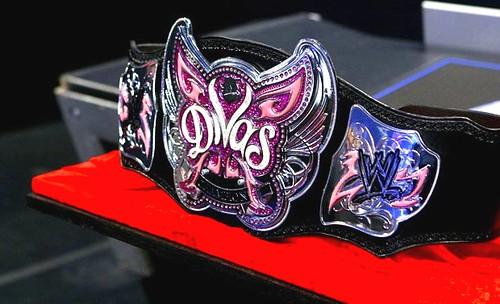 SmackDown Čempiono titulai 3345889668_386dc6691a