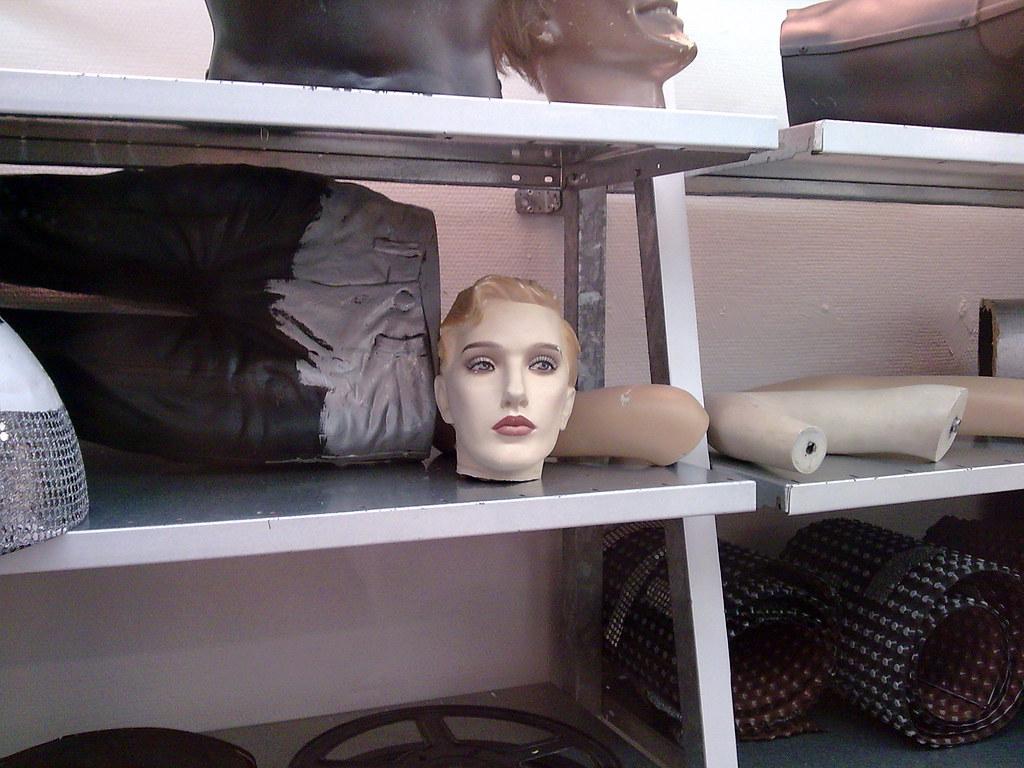 Life in a Shelf