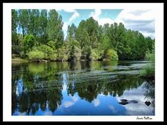 Reflexos no Rio Tua