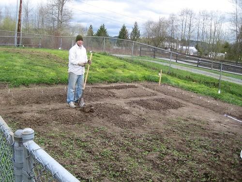 snohomish, tim, gardening, garden, fence, d… IMG_1826