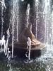 Fountain in the Berlin zoo