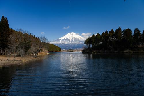 japan march spring fuji 日本 crazyshin shizuoka 2014 静岡県 田貫湖 富士宮市 afsnikkor2470mmf28ged nikond4s 20140308ds10689
