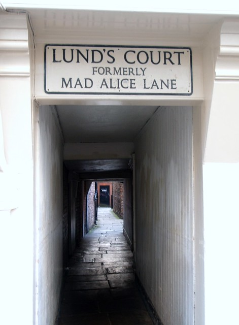 Header of Alice Lane
