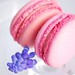 Janjou Pâtisserie - French Macarons for Easter Photoshoot by MSIMANTOV
