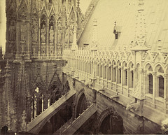 Reims Cathedral, view from Tower over Buttresses