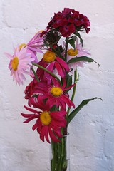 gerbera(0.0), gladiolus(0.0), flower arranging(1.0), cut flowers(1.0), flower(1.0), artificial flower(1.0), floral design(1.0), plant(1.0), flora(1.0), flower bouquet(1.0), floristry(1.0), pink(1.0), petal(1.0),