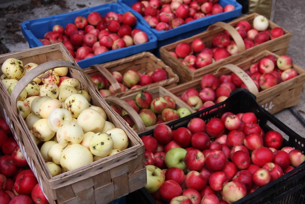 IMG_0129 Rosenhills egna skörd / RH harvest