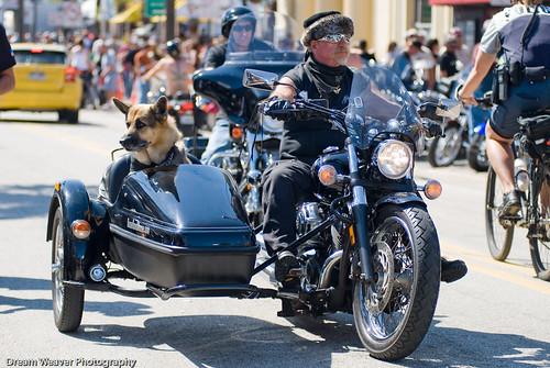 Harley Davidson with a sidecar