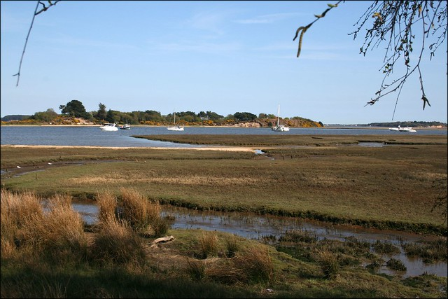 Arne overlooking Poole Harbour and Round Island