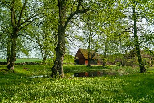 green rural countryside skåne nikon sweden d200 faluröd övedskloster