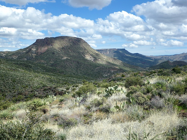 Sugarloaf Mountain and Skull Mesa from Black Mesa Trail - Spur Cross