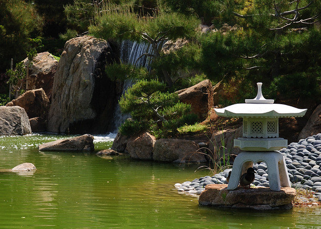 Japanese Friendship Garden Phoenix Flickr Photo Sharing