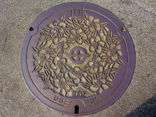 Kyotanabe city, Kyoto pref manhole cover(京都府京田辺市のマンホール)