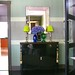 Frank Roop: Hallway + blue + green accents + stripes by SarahKaron
