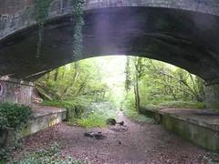 Meon Valley Railway Trail