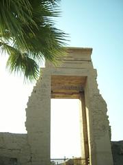 Egypt- (77)