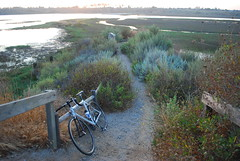 Back Bay Newport Beach Cycling in Back Bay Newport