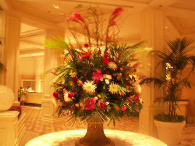 Grand Flower Arrangements http://www.flickr.com/photos/bigbrian-nc/3764976330/